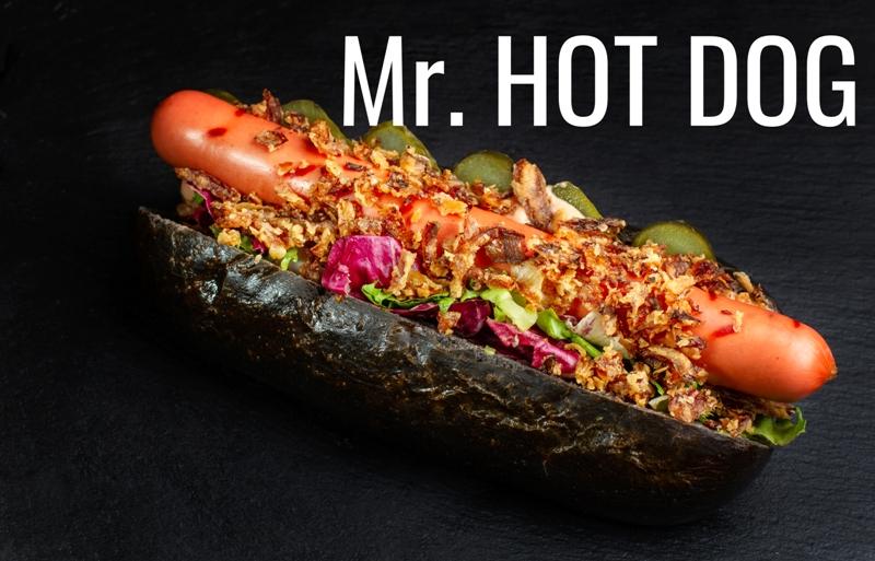 Mr. HOT DOG